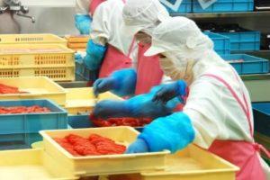 食品の加工工場で働く女性