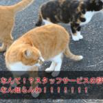 スタッフサービスの評判・口コミ